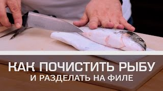 как почистить рыбу и разделать на филе Мужская кулинария