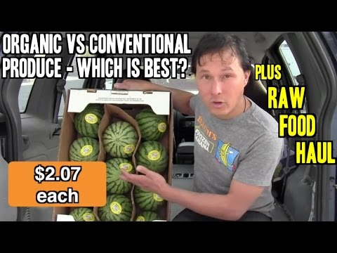 Is Organic or Conventional Produce Best? + Raw Vegan Food Haul