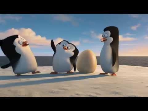 Что знают о пингвинах звери «Мадагаскара» / Промо-интервью для мультфильма «Пингвины Мадагаскара»
