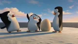 Пингвины Мадагаскара 2014 Penguins of Madagascar трейлер