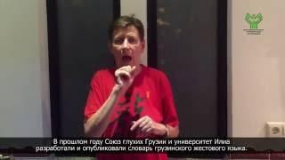 Грузинский словарь жестового языка. С субтитрами