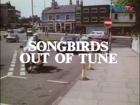 Crown Court  birds out of Tune 1975