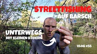Damit habe ich nicht gerechnet | Streetfishing mit leichter Rute | Zielfisch Barsch | Vlog #55
