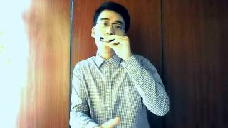 Full house - harmonica cover