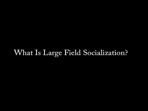 What Is Large Field Socialization?