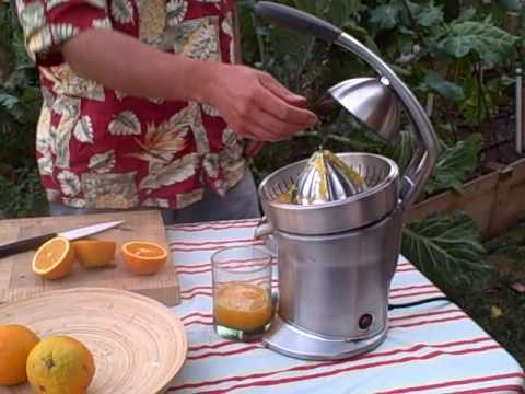Breville Die Cast Stainless Steel Motorized Citrus Press
