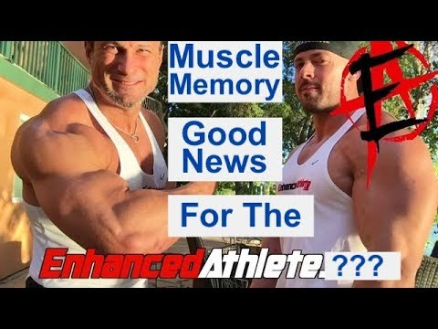 Muscle Memory: Good News for the Enhanced Athlete?