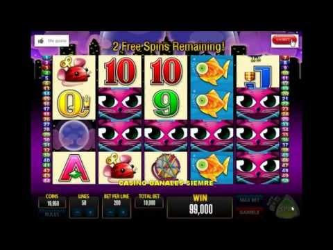 MISS KITTY CASINO, gane $150,000 en 10 min, juego recomendable