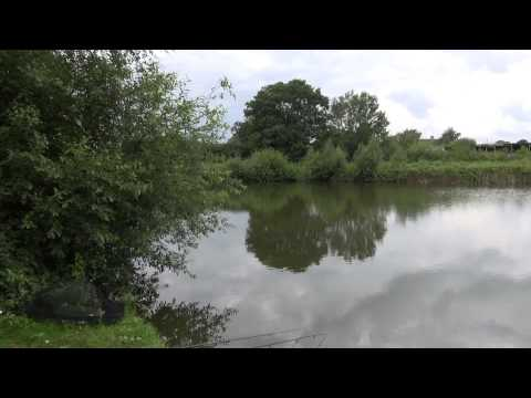 MOREHOUSE FARM FISHERY, WIVELSFIELD, EAST SUSSEX
