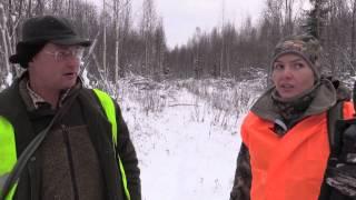 Охота в Вологодской области на лося