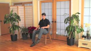 Mindful Chair Yoga: A Playful Practice (20 min)