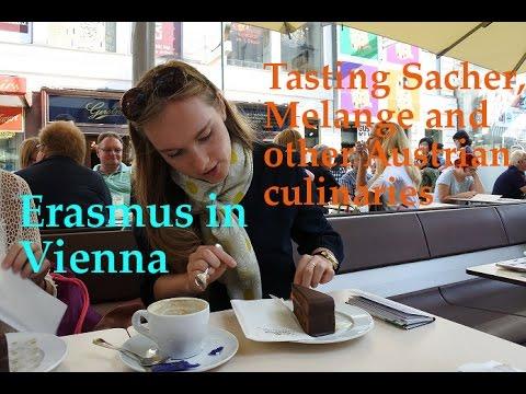 Erasmus in Vienna | Tasting Sacher, Melange and other Austrian culinaries