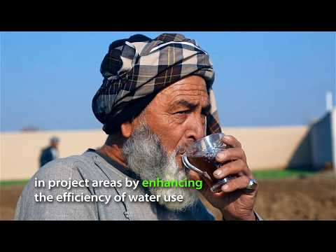 Paved Water Canal Boosts Farm Productivity in Northern Afghanistan