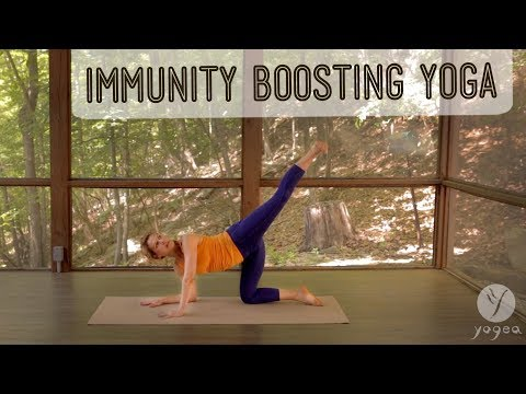 Immunity Boosting Yoga Routine: Fendable (open level)