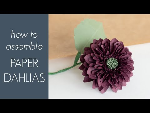 How to Make a Paper Dahlia - Assembly Instructions