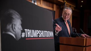 Schumer calls Trump 'dysfunctional' as government shutdown enters day two