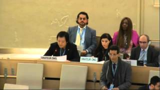 テキサス親父日本事務局 国連人権理事会 慰安婦問題 2016年3月11日