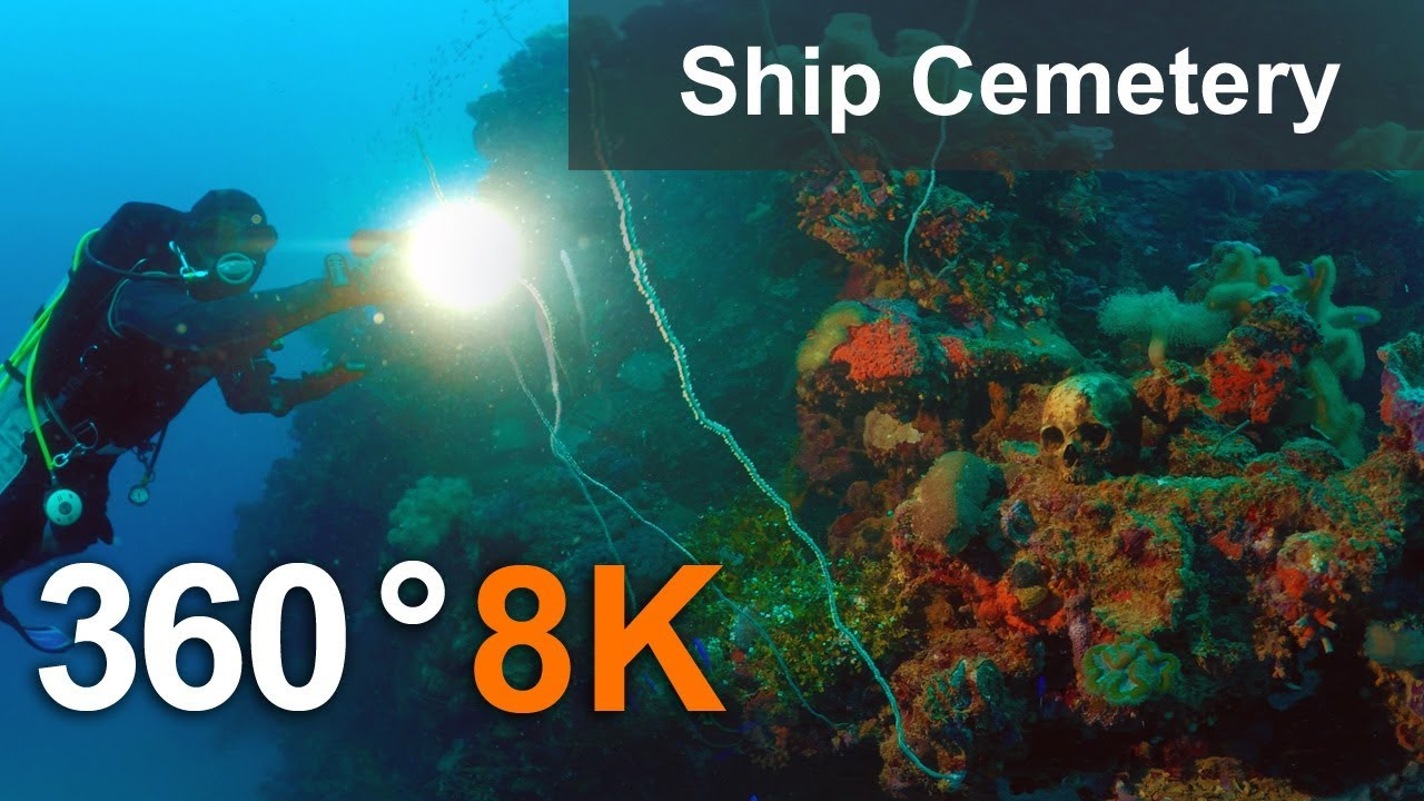 Ship Cemetery in Truk Lagoon in 360 format, Micronesia. 8K underwater video