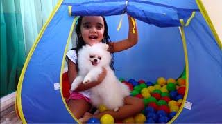 BIA LOBO E POMERANIAN Chloe Brincando PLAYING