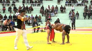 Naga wrestling competition at Hornbill Festival, Nagaland