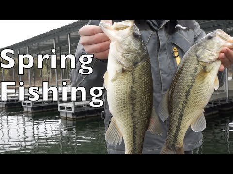 Spring time bass fishing on table rock lake youtube for Best time for bass fishing