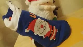 Подарок от дедушки Мороза, обзор/мультфильм