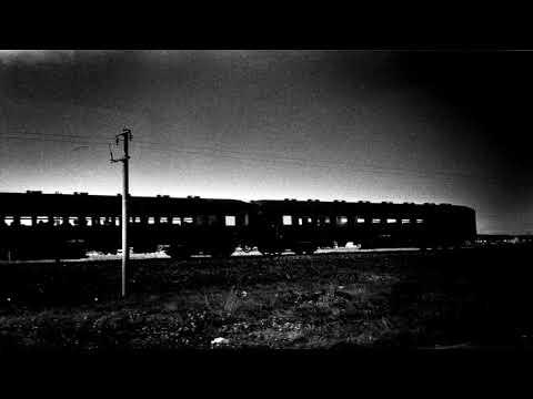 масло черного тмина - Ayaz