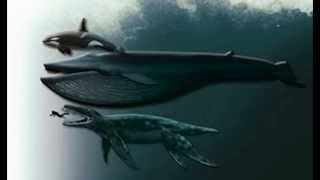 The Biggest Sea Dinosaurs | in the world