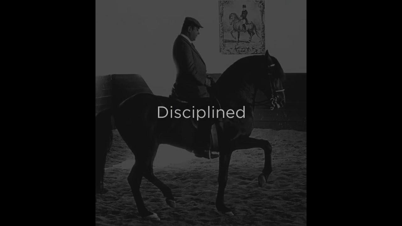 Barbier Farms | Enlightened Horsemanship from the French