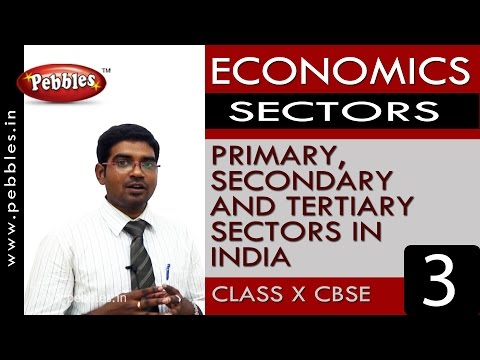 primary-secondary-and-tertiary-|-sectors-|-economics-|cbse-class-10-social-sciences