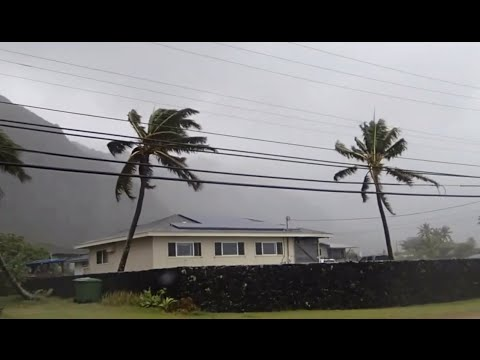 The Winds of Hurricane Iselle - Storm Chase on Oahu