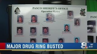 Pasco deputies bust major meth ring with widespread connections