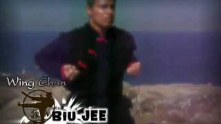 Aula de Kung Fu Wing Chun Prime - Biu Jee no Arpoador - Rio de Janeiro Brasil - Ip Man 3D