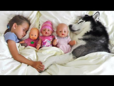 My super fun day with Baby Dolls and Dog, Sofia pretend play with toys for girls