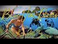 Koh PHi PHi Scuba Diving with Blue View Divers Thailand