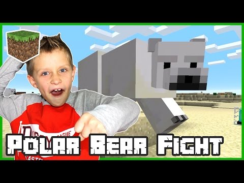 Polar Bear Fight / Minecraft
