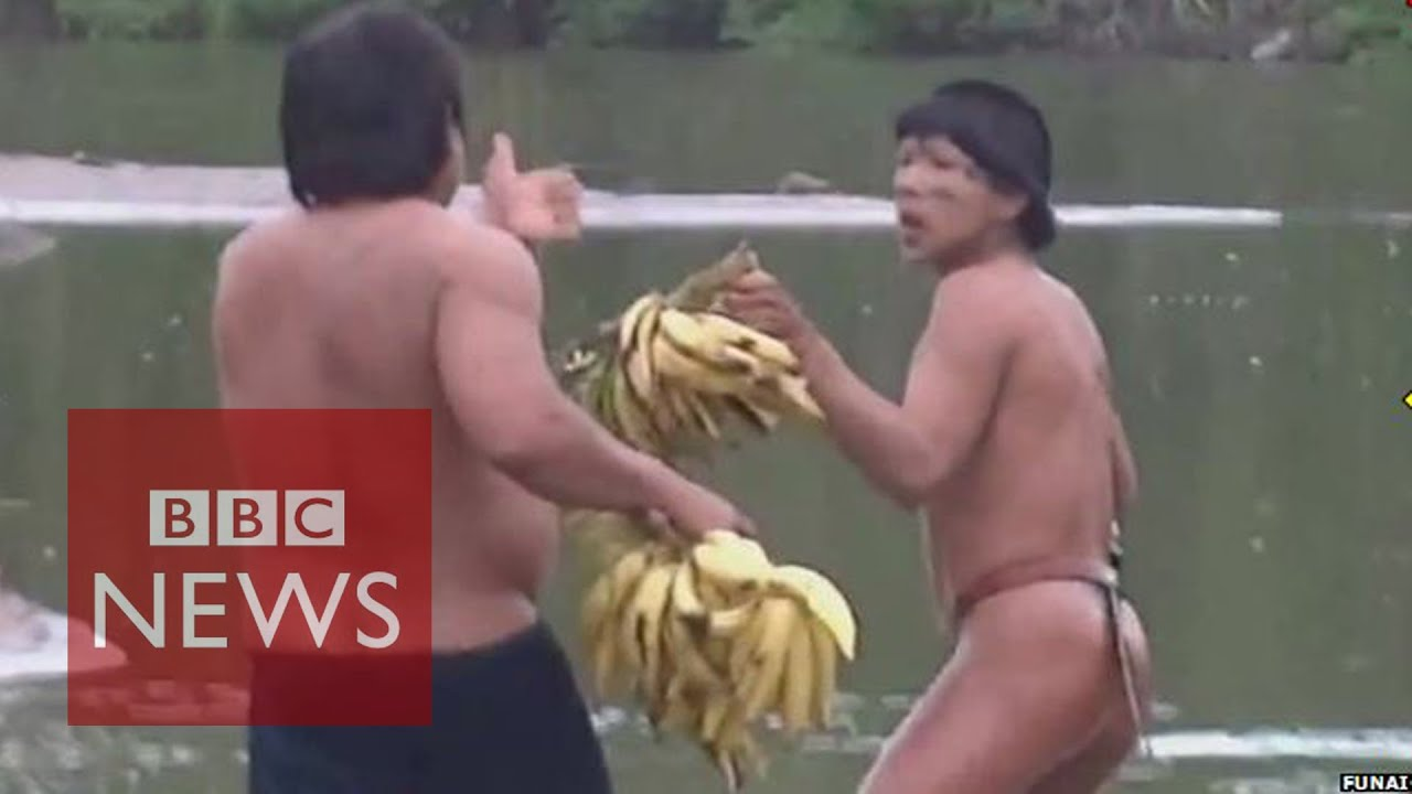 Face to face with isolated Amazon tribe in Brazil - BBC News