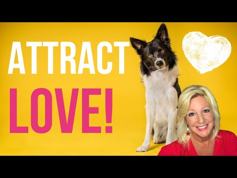 must-love-dogs-|-can-pet-love-help-you-attract-your-soulmate?