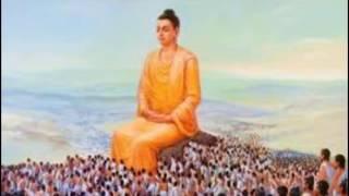 Kể Truyện Đêm Khuya_Đời Là Vô Thường_Những Lời Phật Dạy