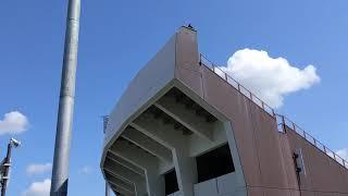 20190827 スタルヒン球場(花咲スポーツ公園硬式野球場) ライト側外野席入口
