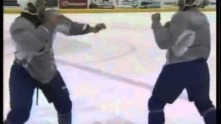 The Art of Hockey Fighting