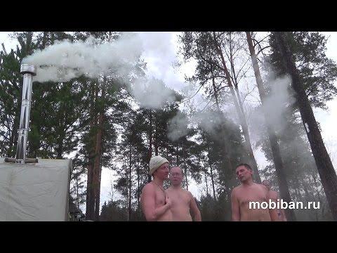 Порятся в лесу 3 фотография