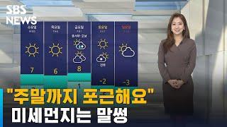 [날씨] 전국 영상권 회복, 주말까지 포근…미세먼지 주의 / SBS