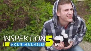 Kätzchen geklaut! Drogentest auf der Wache! | Inspektion 5 | SAT.1 TV