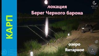 Русская рыбалка 4 озеро Янтарное Карп зеркальный в безлюдном месте