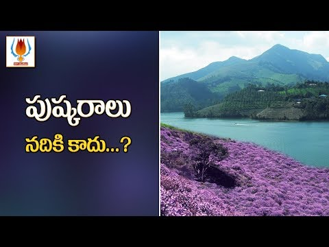 Munnar | Best time to visit Munnar 2018| UVstudios Mp3