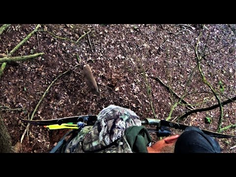 RECURVE BOWHUNTING Whitetail Deer 2019 - INSTINCTIVE Archery Hunting - Bob Lee Signature Bow