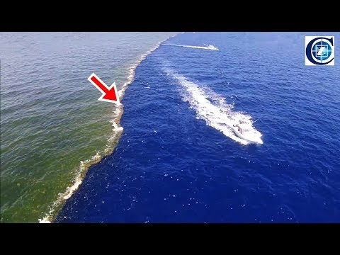 ২ টি সাগর একসাথে মেশে না কেন !! Why Don't the Atlantic and Pacific Oceans Mix in Bangla