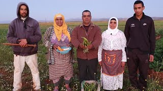 علاش جلبانة غالية🤔 طريقة زراعة الذرة مع ابن لالة حادة