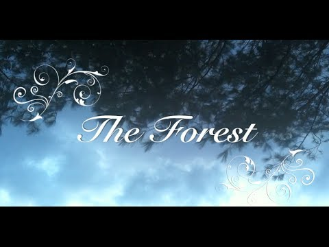 "ASMR - Short Story Reading with Music : ""The Forest"" - By Me! =)"